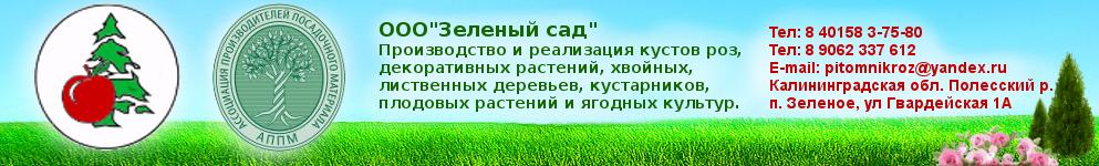 Питомник растений Зеленый сад. Калининград.